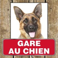 Gare au chien Berger Allemand