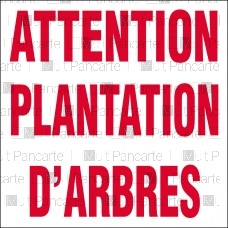 Attention plantation d'arbres